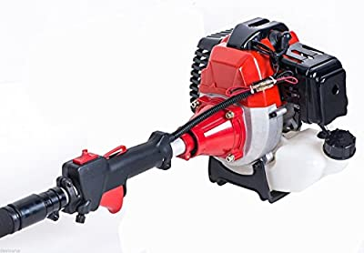 Dealourus 2018 52cc 5 in 1 Long Reach Petrol Multi Functional Garden Tool Including: Strimmer, Hedge Trimmer, Pruner Chainsaw, Brush Cutter & Extension Pole …