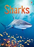 [(Sharks)] [By (author) Catriona Clarke ] published on (January, 2007)