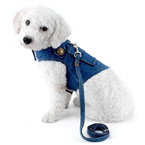 Kragen Hund E Kleiner (zunea Denim Geschirr für kleine Hunde Leine Set verstellbare D-Ring kein Ziehen Blei Pet Puppy Katze strapazierfähigem Running Weste Geschirr)