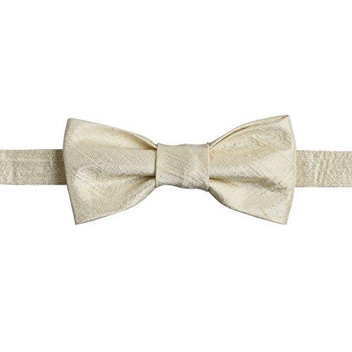 Dupioni Seide (Ivy Lane Design Fliege, vorgebunden Seide Dupioni champagnerfarben)