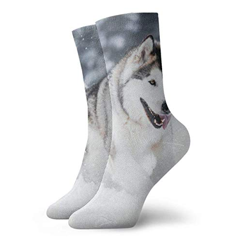 Sportliche Herrensocken Crew Socks Alaskan Malamute Running Custom Personalized Womens Stocking Decor Sock Clearance For Girls - Kleinkind-socken Asics