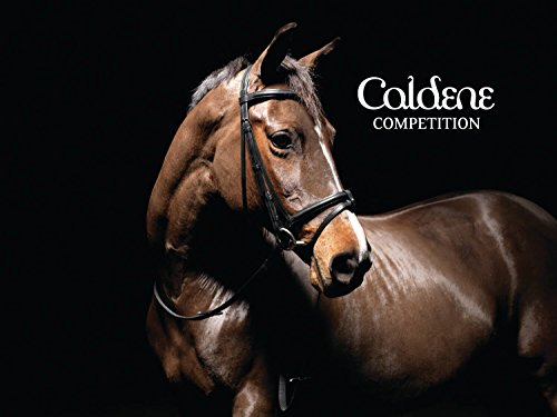 CALDENE BRIDLE FLASH PADDED/RAISED WITH REINS BLACK - XFULL - CAL0096