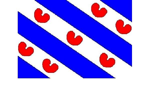 Fahne Flagge Niederländisch Friesland 30 x 45 cm Bootsflagge Premiumqualität