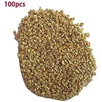 Mazur Semillas de la alta calidad de la supervivencia Semillas de la baya de Goji Lycium Barbarum Semillas de la planta de Wolfberry chino para la granja del balcón del jardín casero (marrón)