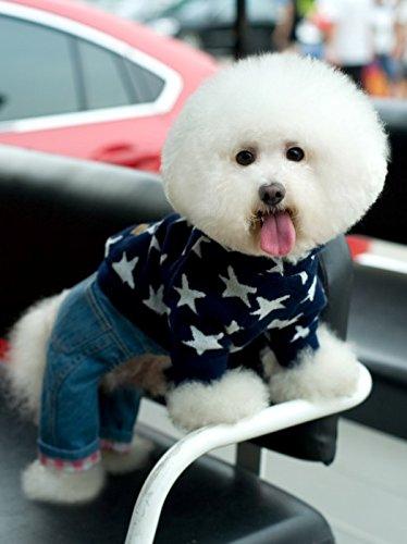GOUER Zarte und Mode das Haustier Hund Kleidung Freizeit Petokraka Stricken hat Shirt (Kostüme Batman Code)
