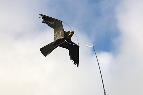 scheuche - Scaring Bird Set 10m CFK (Scary Vogelscheuche)