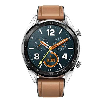 Huawei Watch GT Fortuna-B19V Classic (Silver)