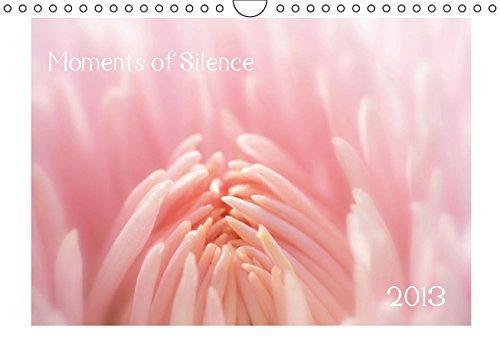 Moments of Silence (Wandkalender immerwährend DIN A4 quer): Traumhafte Blüten in Rosatönen. (Monatskalender, 14 Seiten) (CALVENDO Natur)