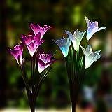 🌷Valhalla Flores Multicolor🌷 La luz se enciende automáticamente cuando oscurece y se apaga cuando se vuelve a exponer a la luz o cuando la batería está completamente descargada. La luz que està en el flore es un Ultra brillante LED y cambia 7...