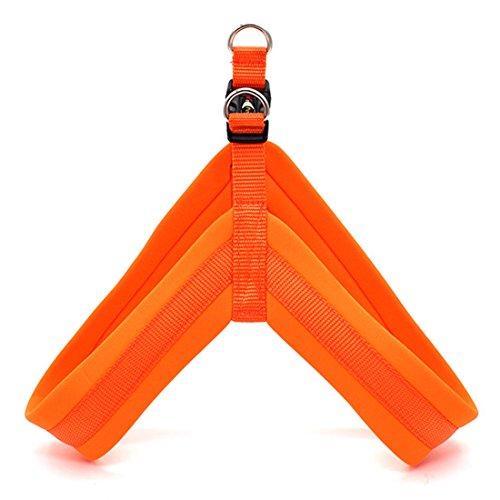 Hundegeschirr Sicher Brustgeschirre Soft Vest Harness Einfarbig Sport Training Sicherheitsgeschirre Atmungsaktiv Autogeschirr Norweger Geschirr für Kleine Mittelgroße und Grosse Hunde (M, orange)