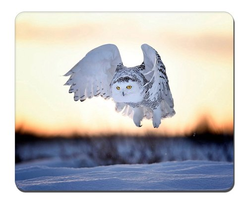 white-owl-flight-mousepadgaming-mouse-pad-102x82-inches