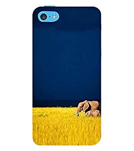 Vizagbeats elephant and calf Back Case Cover for Apple iPhone 5C