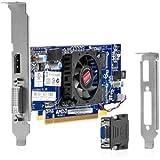HP Radeon HD 7450 DP (1GB) PCIe x16 - Tarjeta gráfica (Radeon HD 7450, 2560 x 1600 Pixeles, AMD, 1024 MB, DDR3-SDRAM, 64 Bit)