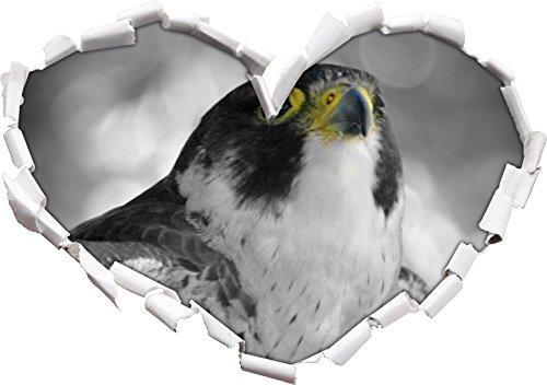 bella graziosa aquila / a forma di cuore bianco nero in formato adesivo aspetto, parete o una porta 3D: 92x64.5cm, autoadesivi della parete, decalcomanie della parete, Wanddekoratio
