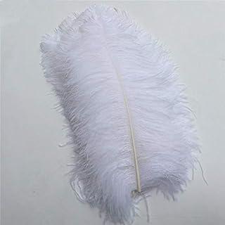 SHthree 50-55CM 20-22-inch Big Pole Plumes d'autruche Naturelles Plumes de décor de Carnaval Teint Naturel pour l'artisanat de décorations de Mariage Plume, Blanc, 30 pcs