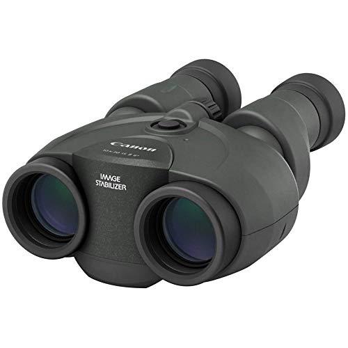 Canon 10 x 30 IS II - Prismáticos (10x, diámetro Efectivo 30 mm, Prisma Porro II, Enfoque Manual), Negro
