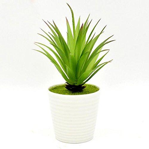 Faden Tasse Aloe Vera Simulation Blume Innendekoration Topfpflanzen jeder Satz von Töpfen 5*18cm (Günstige Keramik-töpfe)