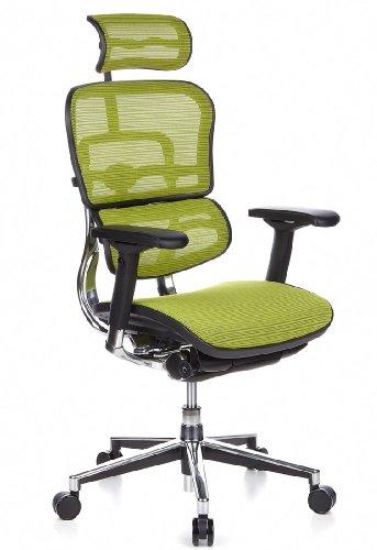 hjh OFFICE 652140 Bürostuhl Chefsessel ERGOHUMAN Netzstoff, grün, viele individuelle Einstellmöglichkeiten, robuster Netzstoff, Drehstuhl ergonomisch, verstellbare Armlehnen, Schreibtischstuhl