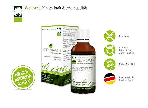 Wellnest Neembaum Konzentrat 100ml | Neem / Niembaum Tropfen | ohne künstliche Farb- oder Geschmacksstoffe - 100% natürlich und vegan | handgemacht in Deutschland