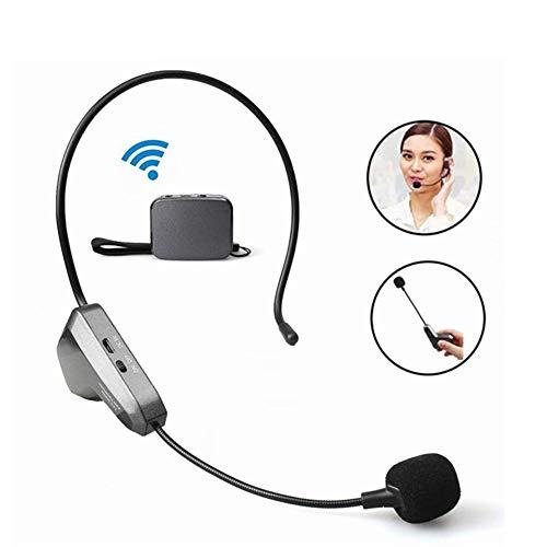 Mini 2.4G Wireless Mikrofon Freisprechanlagen Speech Headset Mikrofon für Computer PC Lautsprecher Teaching Tour Guide (Für Wireless-mikrofon-headset Computer)