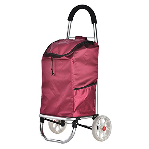 Bequemer Einkaufswagen-Aluminiumlegierungs-alter Mann-zusammenklappbarer Anhänger stoßsicheres stilles tragbares freies Laden-Superlast-tragende Laufkatzen-Puppe (Farbe : Color 4)