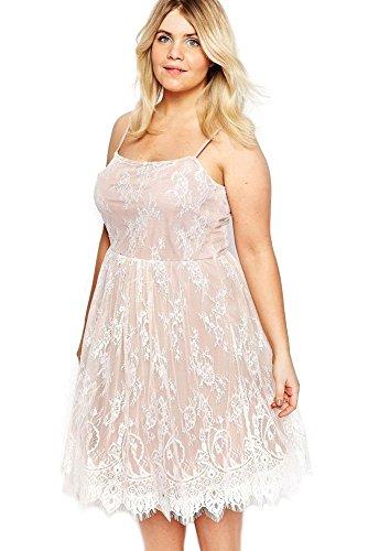 Neue Frau Plus Größe O5705WG Sweet Lace Skater-Kleid Casual Abend Party Wear plus Größe 12–14EU 40–42 (Kleider Sweet 13)