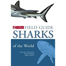Collins Field Guide – Sharks