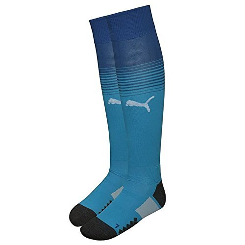 Puma Men's Afc Striped Football Socks