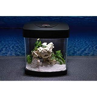 Amtra Nano Aquarium Xcube in schwarz Komplettaquarium LED Beleuchtung Mondlicht Filter Komplett Becken Tank Tag Nacht