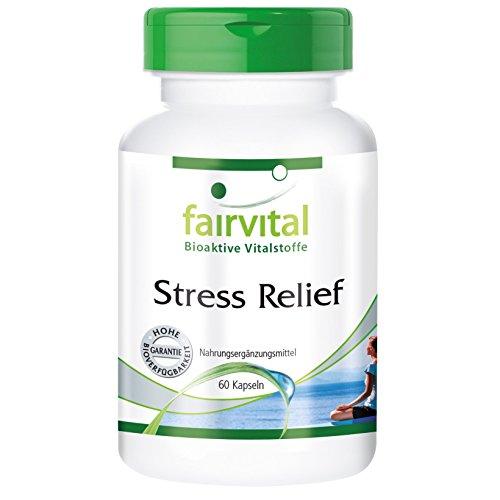Stress Relief - 60 Kapseln - Reinsubstanz - Vitamin B-1, Vitamin B-2, Pantothensäure, Vitamin B-6, Vitamin C, Biotin, Zink, Selen, L-Tyrosin, Taurin, Knöterich-Extrakt, Resveratrol, Roter Panax Ginseng Panax Ginseng-100 Mg