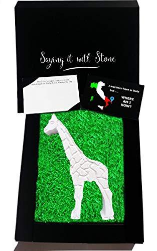 Regalo - Jirafa hecha mano Italia - Símbolo belleza