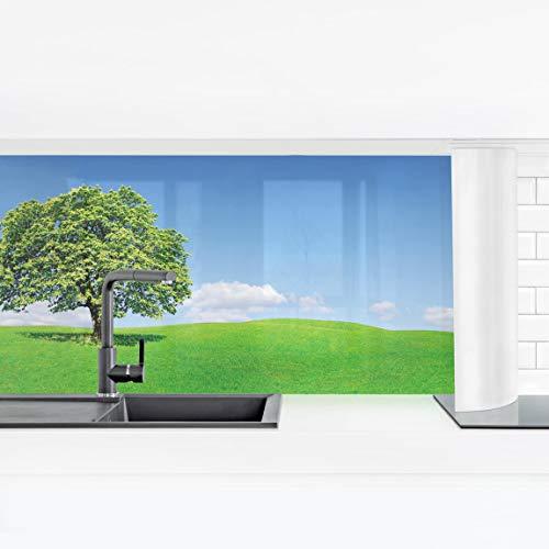 Beruhigend Dampf (Bilderwelten Küchenrückwand Panorama Folie selbstklebend - Panoramic Premium 80 x 280 cm)