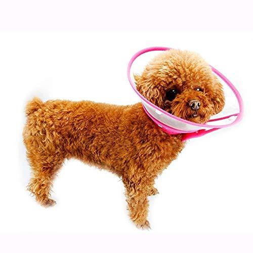Durchscheinend Schutzhalsband für Hunde und Katzen: Vier Größen,Beständig Kratzer,Anti-Biss-Anti-Lecken hat keinen Einfluss auf das Fressen von Haustieren,das Schlafen und das Trinkwasser,Green,L