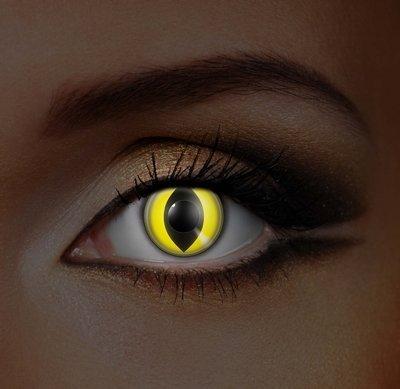 n Yellow Cat UV
