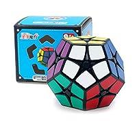 Shengshou 2x2x2 Megaminx Rubix Cube 2x2 Dodecahedron Speed Cube Puzzle Toy (Black)
