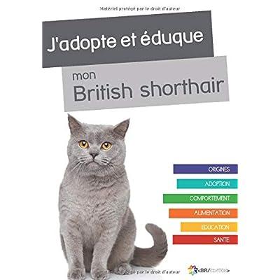 J'adopte et éduque mon British Shorthair