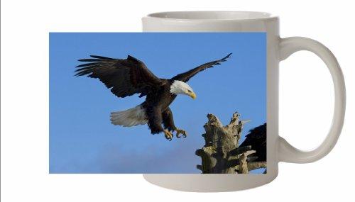 Bald Eagle uccello in ceramica tazza 10FL