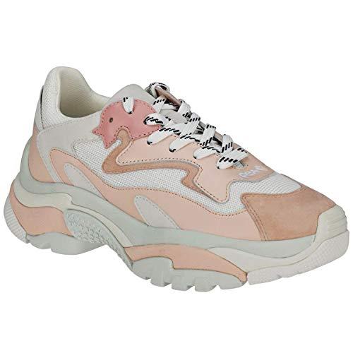 ASH Addict Donna Sneaker Bianco