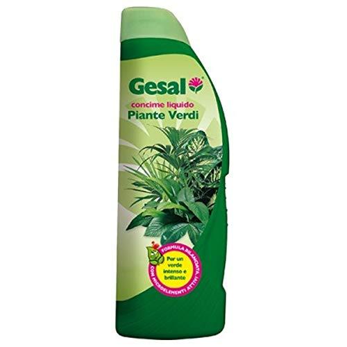 Gesal 2676202005 concime per piante verdi, 1 l, verde, 26.5x7x8.9 cm
