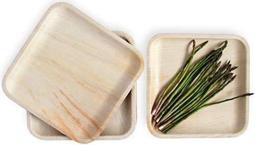 """Leafily Palmblattteller - 25 cm (10\"""") Quadratisch - Bio - 100{f809fbcd440132adb6c30419ccef6f57e8d32151da1ecb70cbd18bd9cf73c6fe} kompostierbar - Biologisch abbaubar - Robust- umweltfreundlich - Premium-Qualität - Einwegteller - USDA zertifiziert - 22 Stück"""