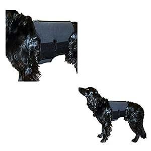 Ceinture lombaire pour chien en tissu thérapeutique