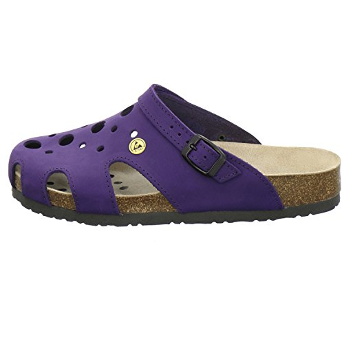 AFS-Schuhe 21993, ESD-Clogs bequeme Hausschuhe für Damen, praktische Arbeitsschuhe, echt Leder Viola