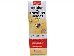 Rentokil RKLFS58 Piège pour insectes rampants et araignées