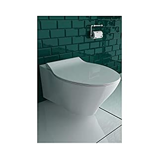 Rimless wall-mounted toilet rimless ceramic toilet incl. Toilet seat with soft-close / quick-release function suitable for GEBERIT