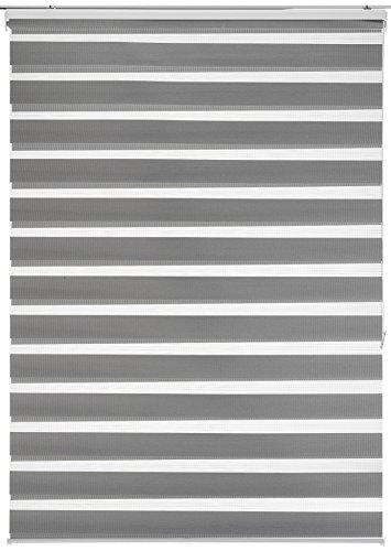 Estores Basic Store enrouleur nuit/jour Gris 120x6x250 cm gris