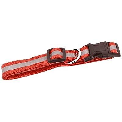 Promobo Leine 120cm und Halskette 25bis 40cm für Hunde reflektierend rot S
