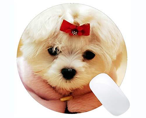 Yanteng fertigte runde Mausunterlage, Pudel-Hunde niedlichen Hund Rutschfeste Gummimausunterlage Gaming-Mausunterlage (Niedlichen Pudel)