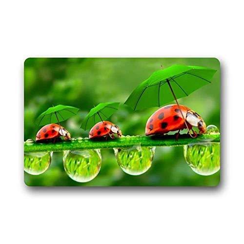 ITSHHMB Best Funny Ladybug Umbrella Drops Door Mat Washable Doormat Mat Funny Welcome Entrance Mat 23.6x15.7 inches/60 x 40cm -