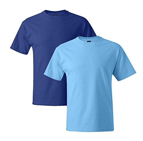 Hanes Mens 5180 Short Sleeve Beefy T 1 Aquatic Blue / 1 Deep Royal