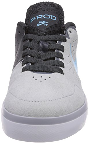 Nike SB Paul Rodriguez Ctd Leather (Gs) 677375 Jungen Sneakers Grau (Wolf grey/clrwtr-anthrct-white 041)